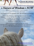 eponaquest, linda kohanov, france, carole thomas, developpement personnel, cheval approche epona, le tao du cheval, equicoaching
