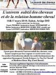 FLyer Atelier Univers Subtil Ariège mars 2019.jpg