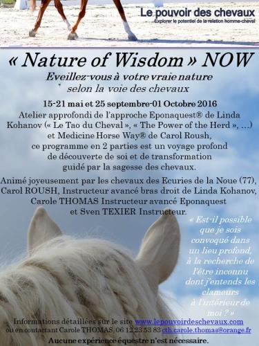 Flyer NOW 2016.jpg