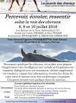 Flyer Atelier Percevoir juillet 2016.jpg