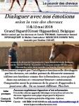 Flyer Atelier Emotion Mai 2018 Belgique.jpg
