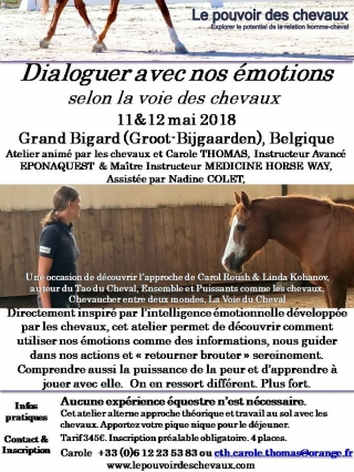 Flyer Atelier Emotion Mai 2018 Belgique.jpg