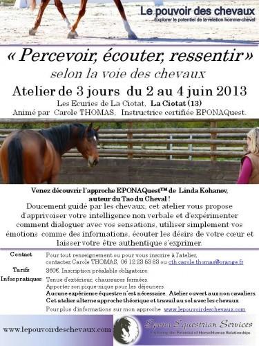 Flyer Atelier Percevoir La Ciotat 2 juin 2013 b.jpg