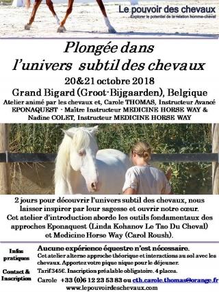 FLyer Atelier Univers Subtil Belgique octobre 2018.jpg