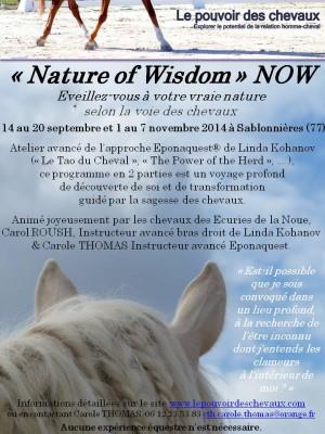 eponaquest,approche epona,carol roush,carole thomas,linda kohanov,le tao du cheval,developpement personnel,cheval
