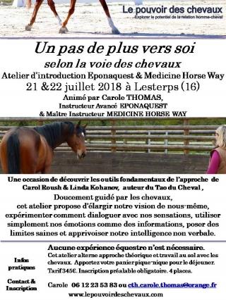 Flyer Atelier Introduction Limousin juillet 2018.jpg