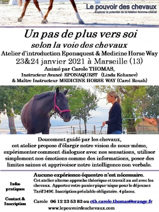 carole thomas, communication sentiente, programme NOW, eponaquest, linda kohanov, carol roush, carole thomas, le pouvoir des chevaux, medicine horse way, equicoaching, horsecoaching, developpement personnel, cheval